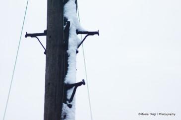 lampost snow